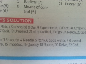 21 across - 'nImpractical'?