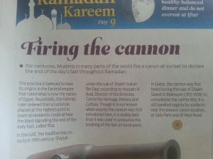 It should be 'cannon' throughout the article, not mixed up with 'canon'