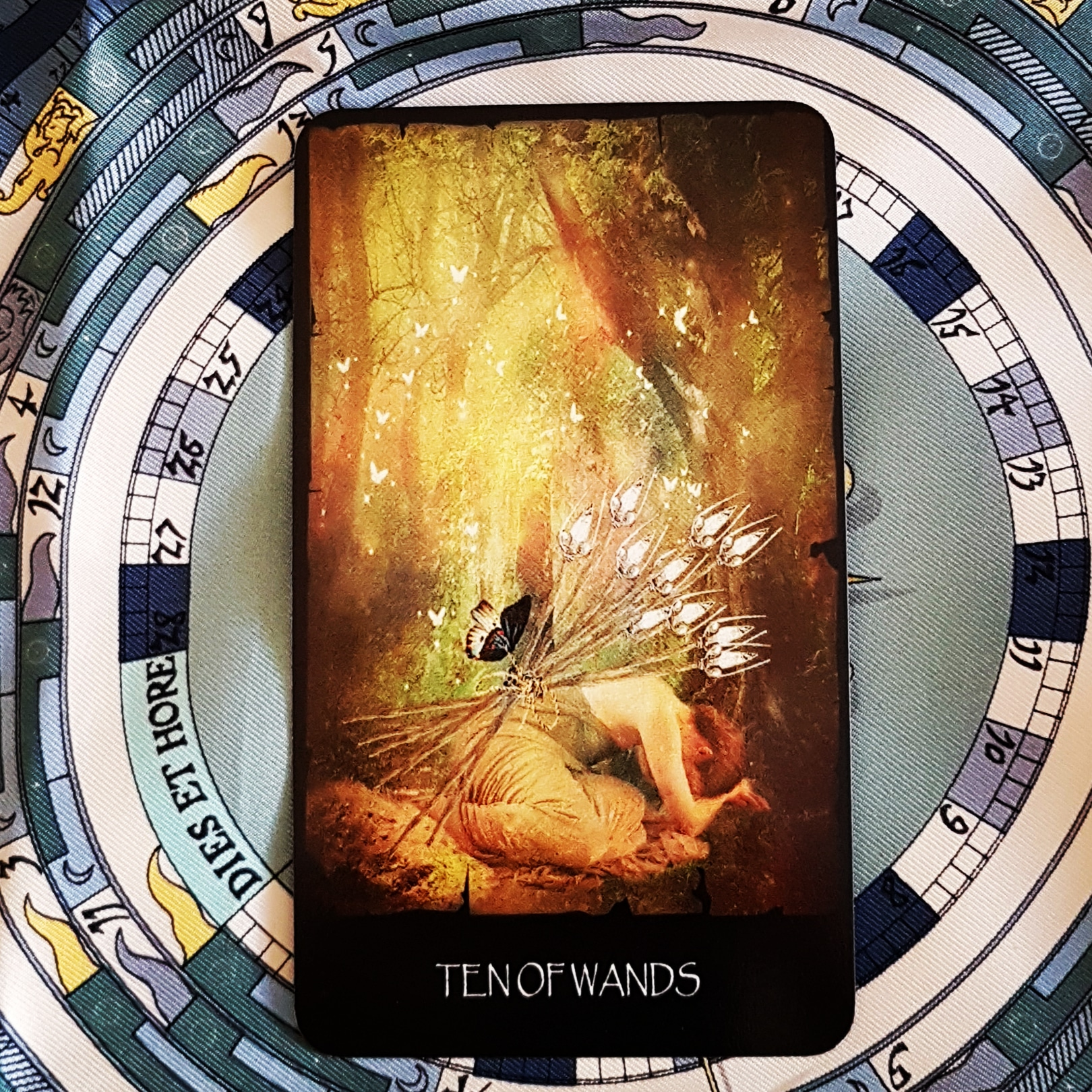 7 of Pentacles | Notes by Nectar